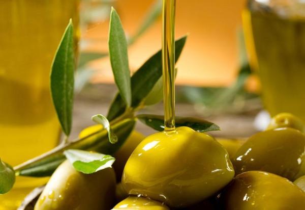 epicur magazine buen vivir aceite de oliva aceituna costa rica españa virgen extra