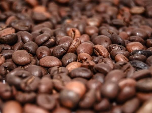 epicur magazine buen vivir foodie premium gourmet costa rica cafe barista grano