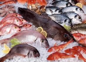 epicur magazine buen vivir pescado gourmet costa rica