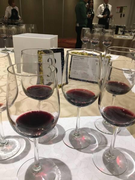 epicur magazine buen vivir wine sensations escuela del vino carmen aguirre cata ciegas vino